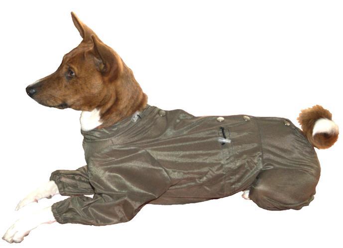 москитка для собак