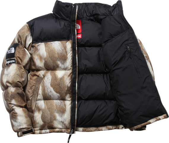 supreme-x-north-face