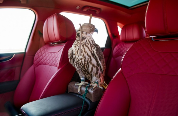 The Bentley Bentayga Falconry 2